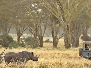 Ultimate Bush And Beach Safari In Kenya