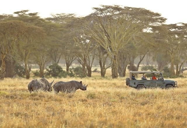 Ultimate Bush And Beach Safari In Kenya Photos