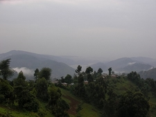 Bwindi NP Overview UG
