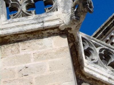 Beziers Cathedral Gargoyle