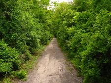 Pathway Entrance