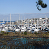 Bangor Marina As Seen From A Footpath Above Pickie