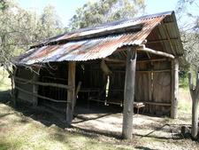 The Bark Hut