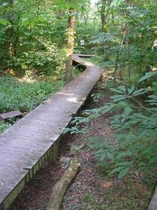 Beargrass Creek Preserve
