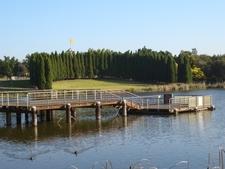 Lake Belvedere