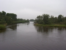 Biesbosch Kreek