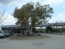 Shark Valley Bike Rentals And Visitor Center