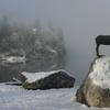 Statue Of Zlatorog With Lake Behind It