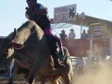 Borroloola Rodeo