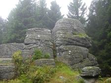 Brockenkinder Tor On The Renneckenberg