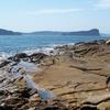 Broken Bay With Lion Island