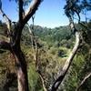 Brown Hill Creek