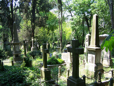 Old Graves And Tombstones