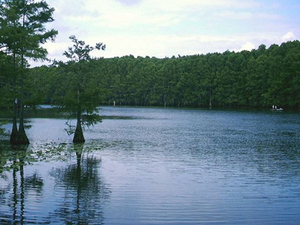 Lago Caddo