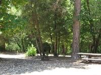 Cal Ida Campground
