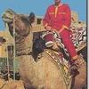 Camel Festival & Safari