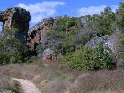 Camelo Vila Velha