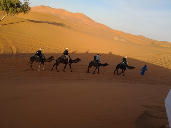 Desert Trip Merzouga Big Dunes ( shared) Photos