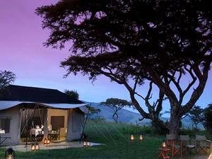 5 Days Serengeti Camping Safari Photos