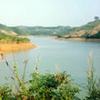 Cam Filho Lago