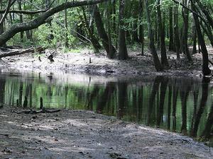 Canoochee Río