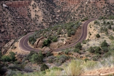 Canyon Junction Switchbacks - Zion - Utah - USA
