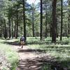 Cape Final Trail - Grand Canyon - Arizona - USA