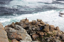 Cape Point Nature Reserve SA Coastal View