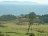 Mocha Island