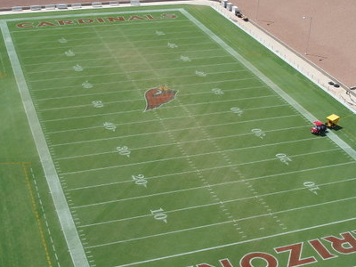 University Of Phoenix Stadium Field