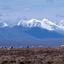 Caribou And Brooks Range