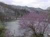 Carr Creek Lake