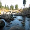 Carson River