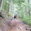 Carter Falls Trail