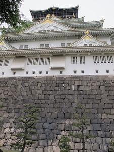 Castello Di Osaka Wall