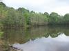 Castor Creek Louisiana