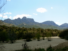 Catalina State Park In Oro Valley