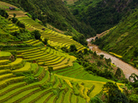Discover Vietnam Highlights