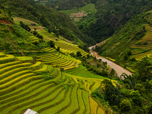 Discover Vietnam Highlights Photos