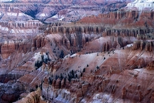 Cedar Breaks UT Landscape