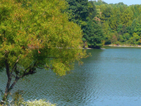 Centenário Lago