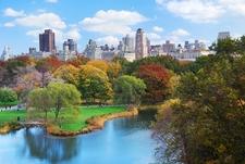 Central Park & Manhattan Skyline