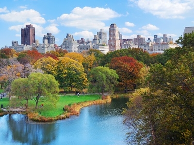 Central Park & Manhattan Skyline