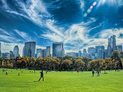 Central Park With Manhattan Backdrop