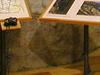 Centro De Interpretación De Las Foces