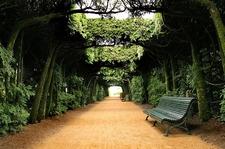 Chateau De Hautefort - Perigord Topiary