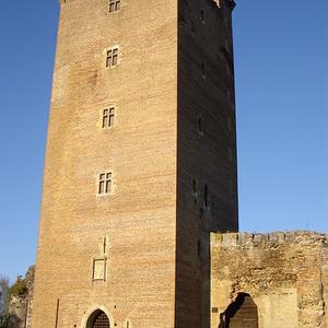 Chateau De Montaner