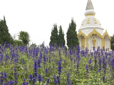 Chedi Phra Borommasaririkkathat Khao Kho
