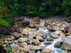 Assam - Meghalaya - Arunachal Pradesh Tour Package Photos