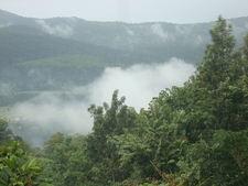 Chikmagalur Winter View
